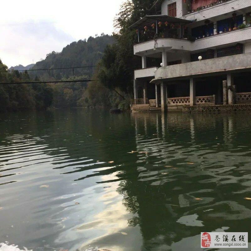 鹤山越塘地图