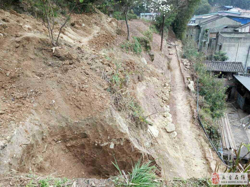 秋林哥走进三台县秋林镇地质灾害整理现场图片