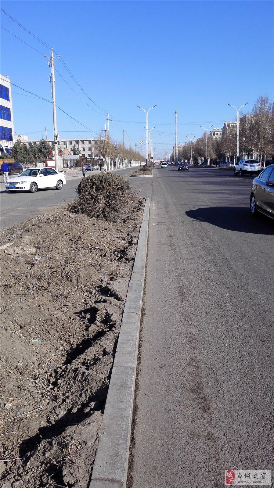 【今日头条】白城海绵城市建设施工公告(附施工路段)