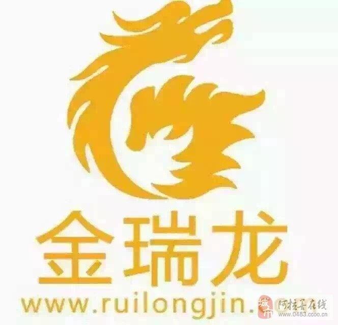 公司地址:内蒙古阿拉善左旗