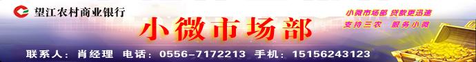 望江农村商业银行小微市场部