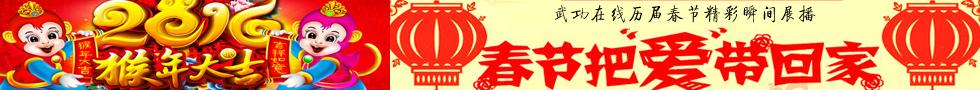武功春节文化活动精彩大汇聚!
