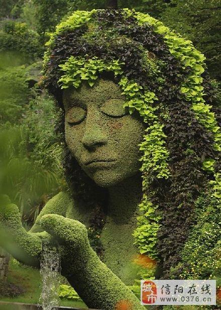 别人的植物园,累觉不爱