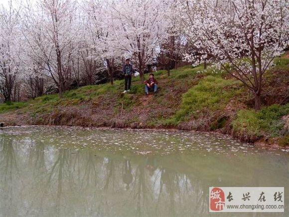 长兴泗安二界岭的风景~看久了会醉!