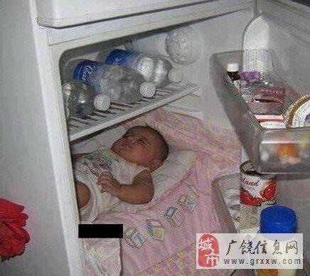 三伏天都快热成狗了,还是躲在冰箱里凉快!