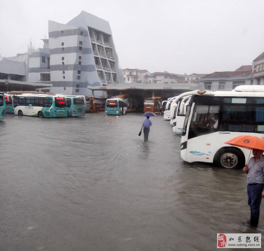 普降暴雨后,如东县掘港街上是什么样子?