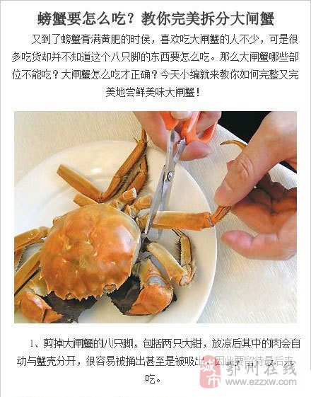 吃大闸蟹滴季节到了!教你完美拆分大闸蟹