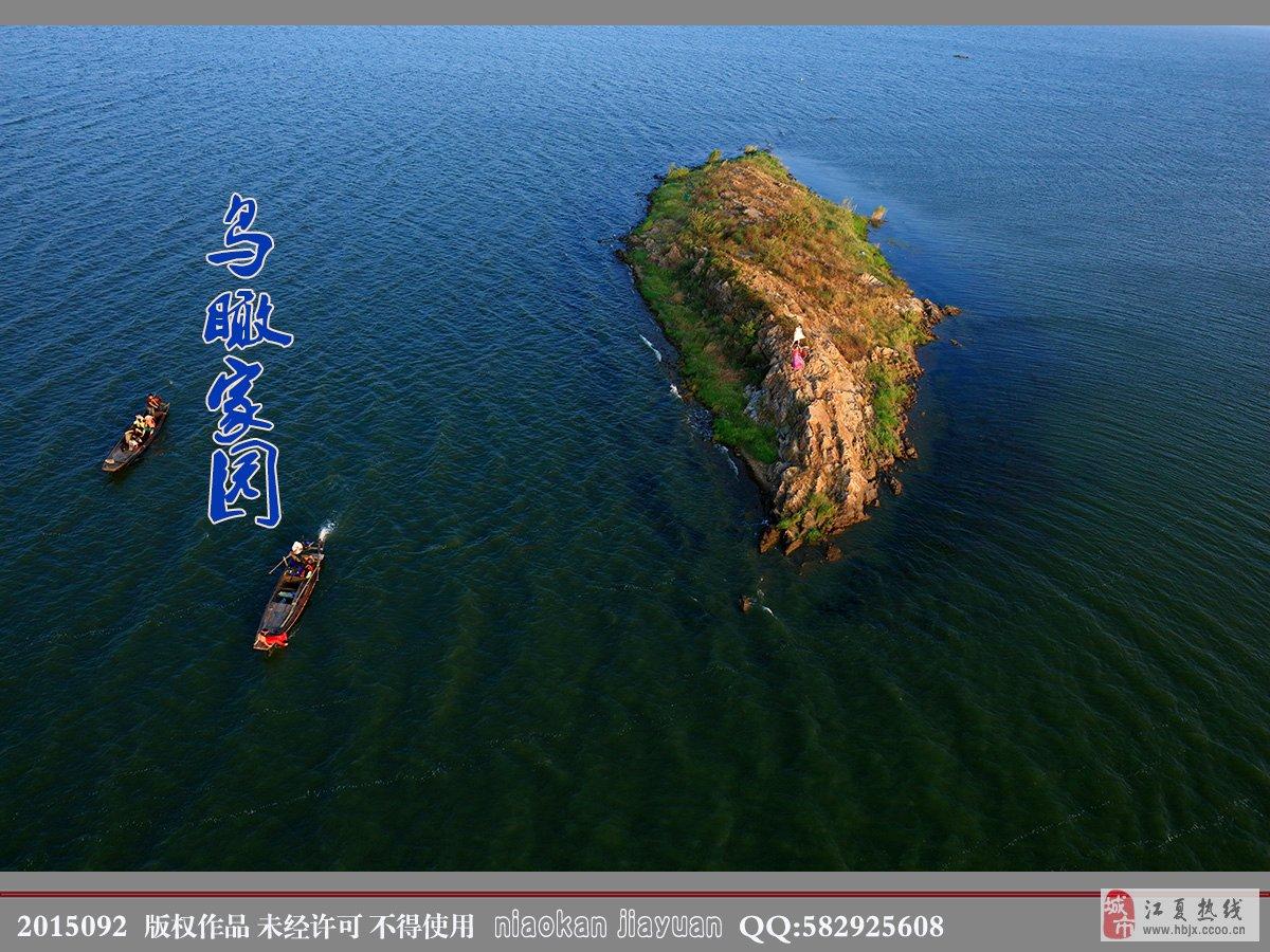 青山岛附近的不知名的小岛.