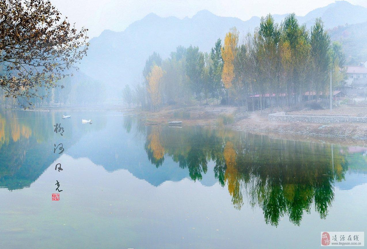 深秋柳河图片
