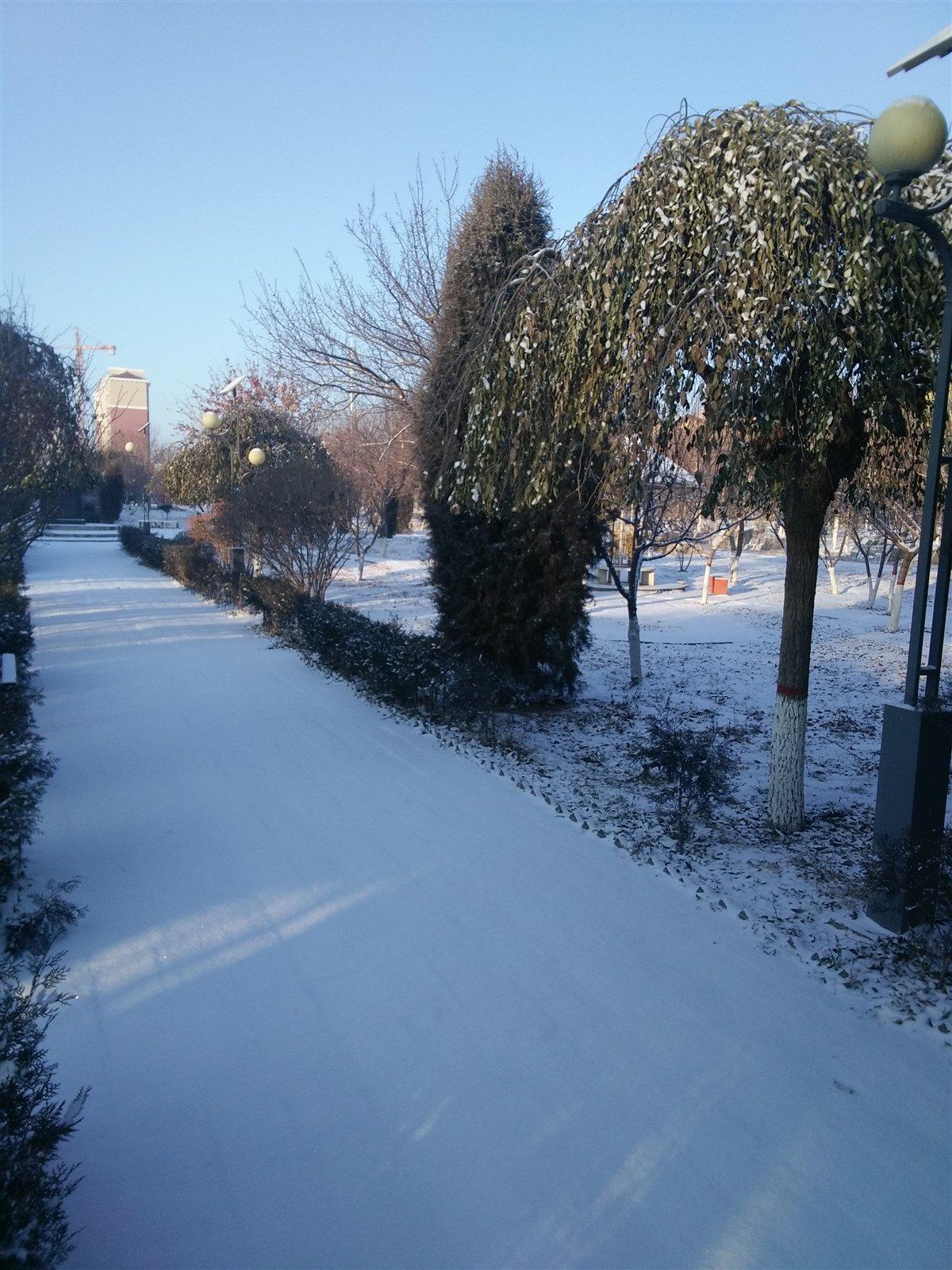 《七绝; 雪韵白城》