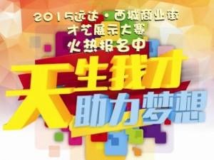 2015远达・西城商业街才艺展示大赛