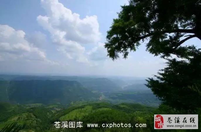 【图】苍溪东溪镇 奇山——龙岗山