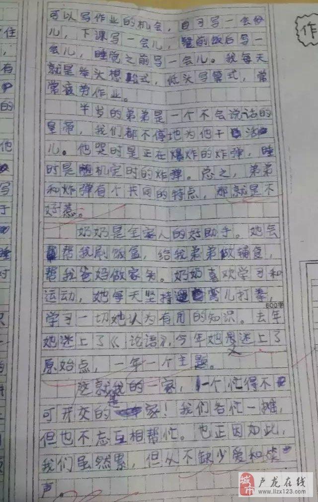 哈市11岁男孩作文写最真实二胎家庭