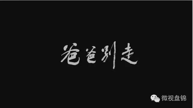 【关注】看哭十万人温情催泪微电影《爸爸别走》