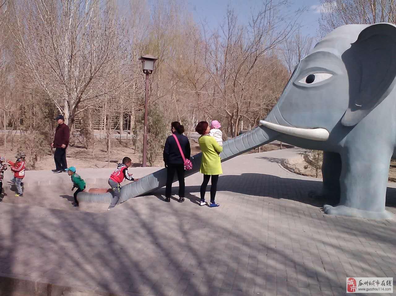 春季来临在瓜州南公园自娱自乐的老年人