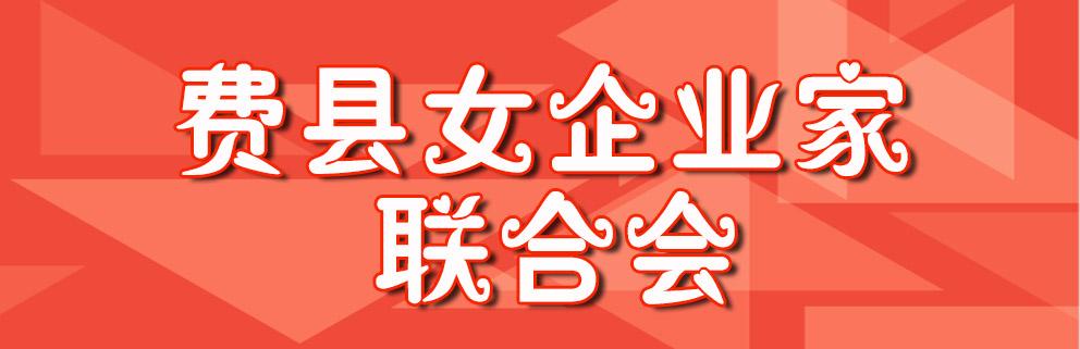 费县女企业家协会封面