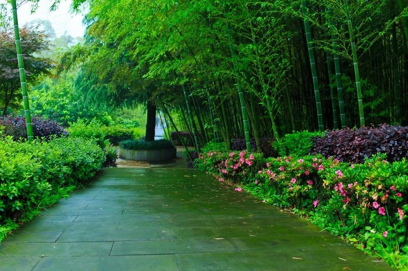 重庆万盛九锅箐森林公园_旅游景点_万盛在线
