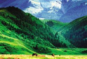 巴里坤草原 旅游景点 乌市城市在线