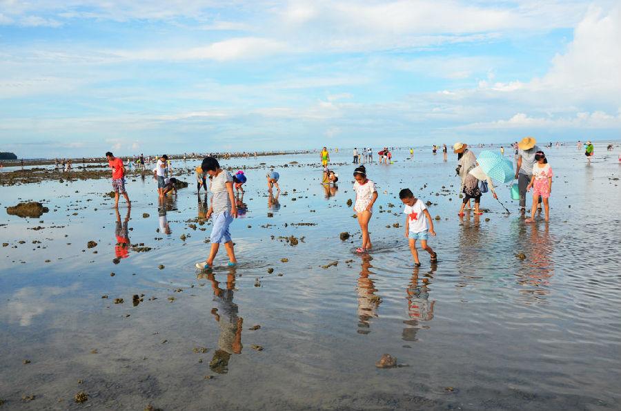 潭門首屆趕海節結合當地水文地貌特色,讓游客體驗漁民趕海民俗 ,設計了以尋寶為主題的游戲。早上還碧波萬頃的潭門灣,到了下午五點多海水就退潮了,剛剛沒過腳面的海面上到處都是前來趕海的游人。在這些游人當中,大多數是父母帶著孩子一起來的,他們帶著自己的孩子卷起褲腿,帶上小鏟子和水桶下到水里,在海邊踏浪戲水尋找各種貝殼、海螺、螃蟹和魚類等大海的饋贈。有的家長和孩子手牽手趕海拾趣,有的漫步在沙灘上,有的享受純野生海鮮大餐,沐浴溫和的海風,體驗真實的漁民生活。美好的親子時光定格在沙灘大海之間成為潭門灣一道靚麗的