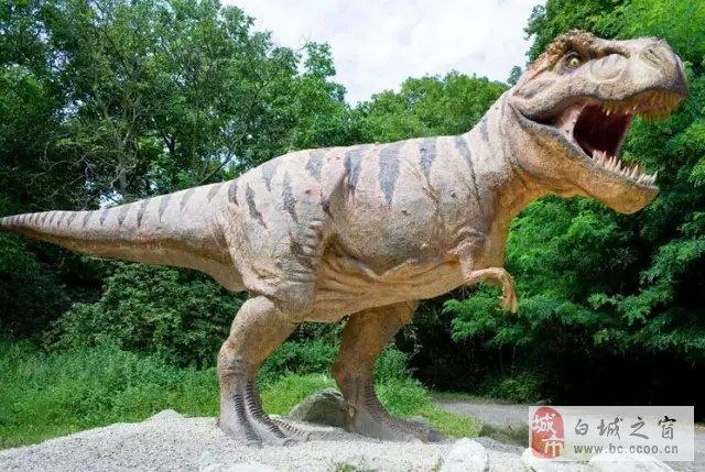 最奇怪的史前动物