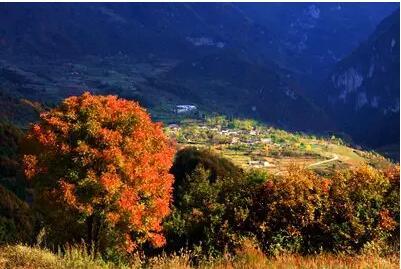 三滩自然风景区,是著名的天然森林风景区