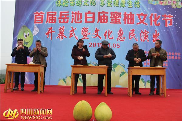 广安:岳池白庙首届蜜柚文化节开幕(组图)图片
