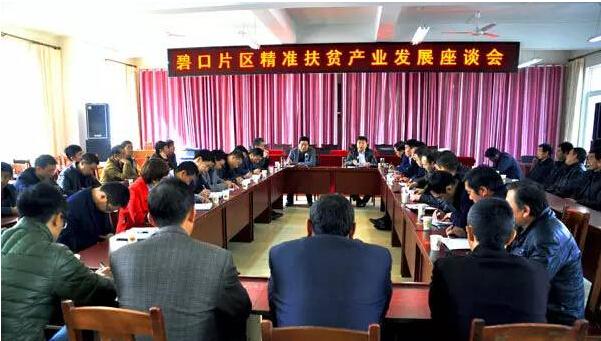 文县召开碧口片区精准扶贫产业发展现场会议