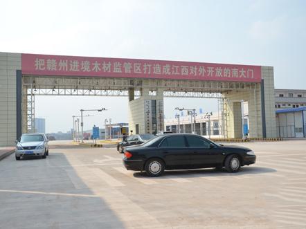 天津临港木材市场