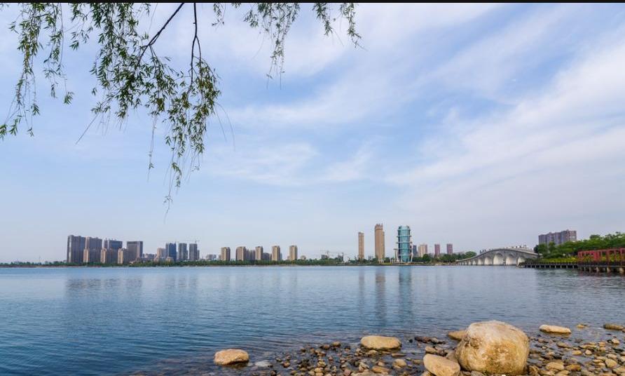 此外,西双湖风景区百合园定于5月20日开园.