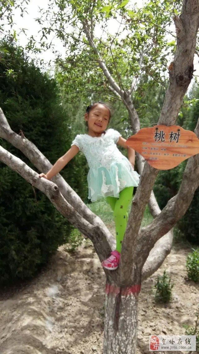 青岛电视台曹源