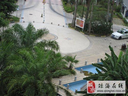 双沟新城实验学校风景