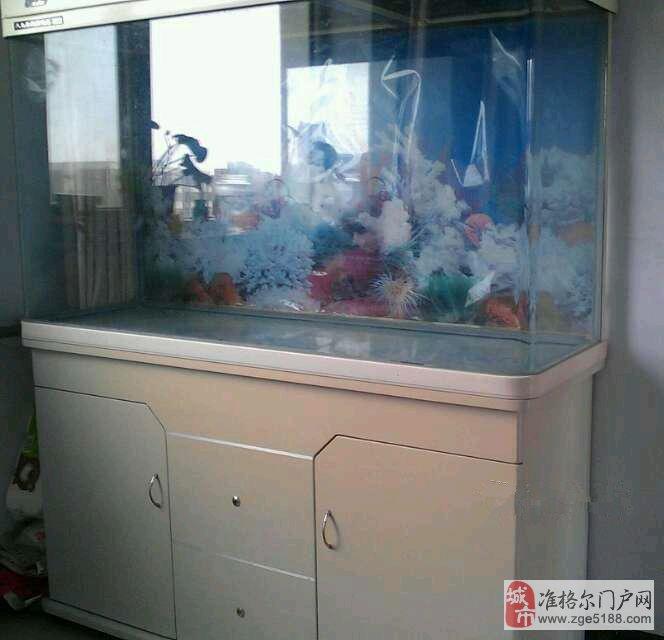 出售鱼缸,恒温器,过滤器