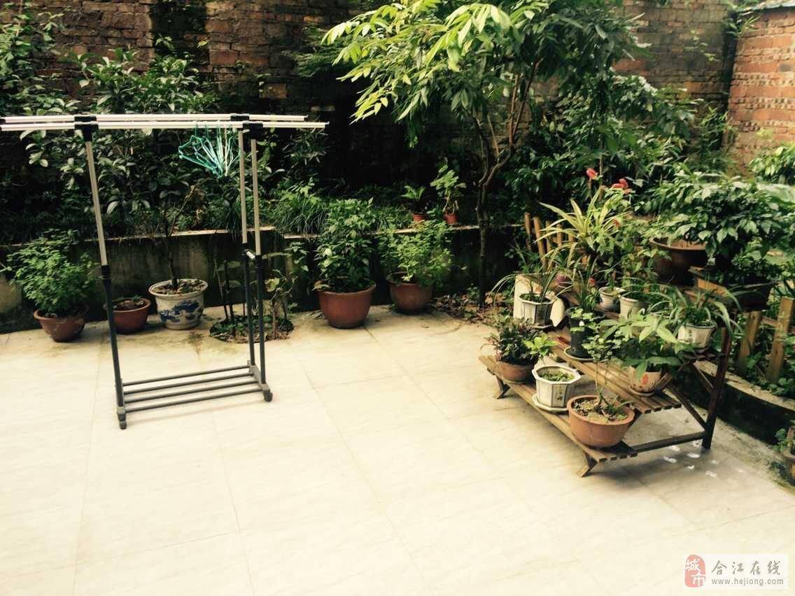 商业街新房,100平米低价28.8万带屋顶花园!图片