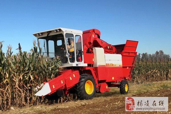 小型玉米收割机