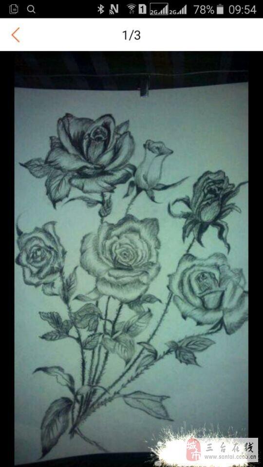 素描玫瑰花百合花荷花