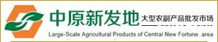 河南新�L�r�I股份有限公司