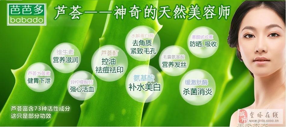 芭芭多芦荟专卖经销商招募中_金塔在线