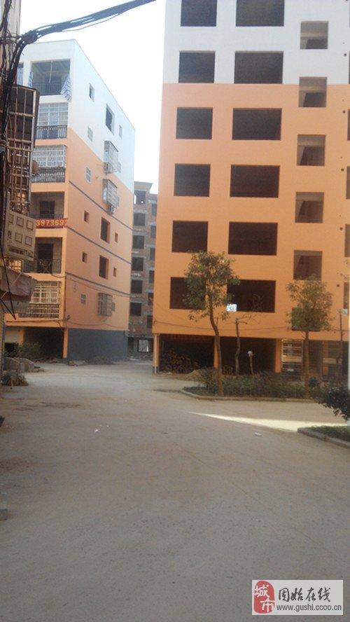 固始实验高中对面玉花西苑6楼148平米10万出售