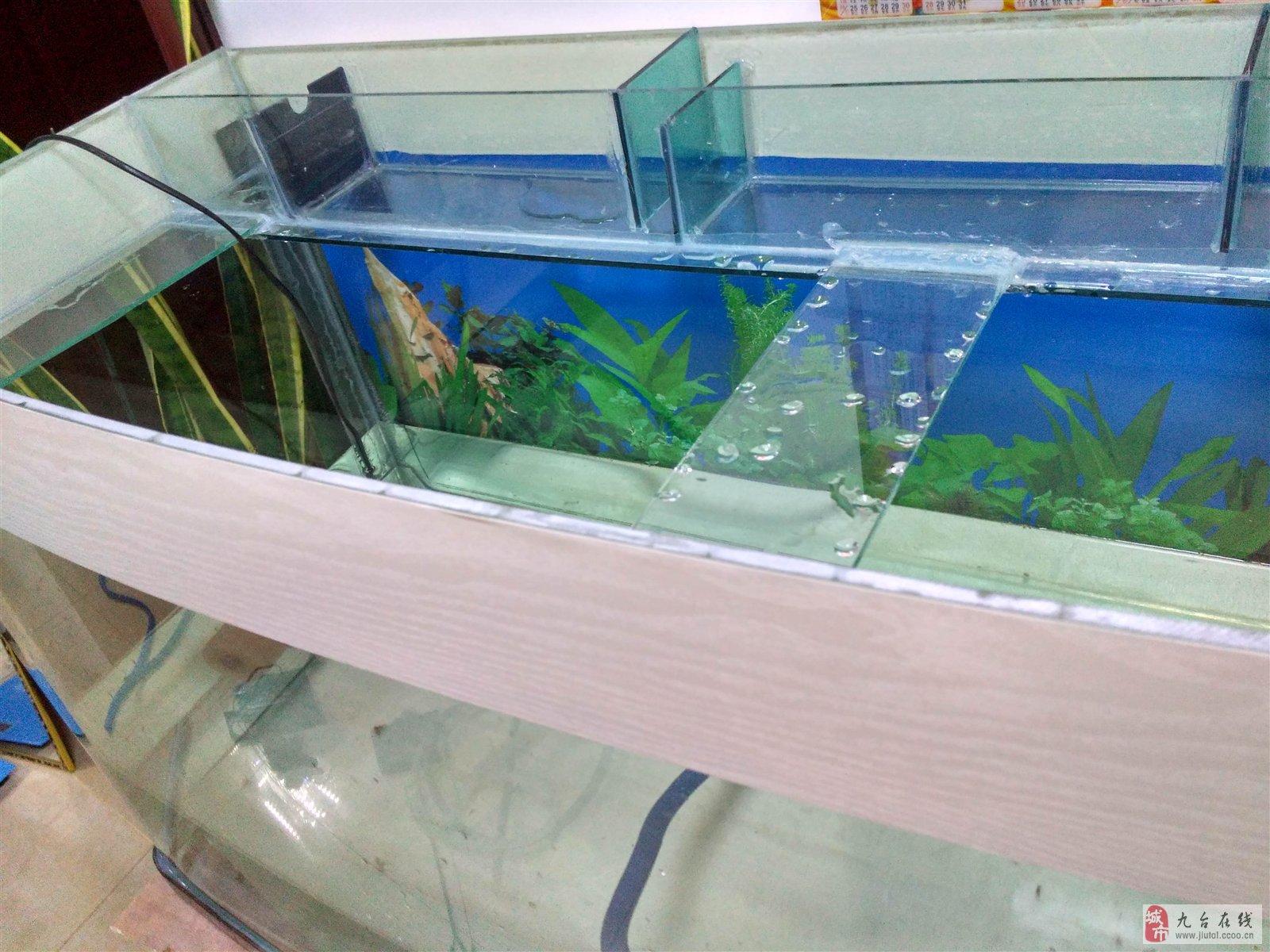 出售1米2佳宝鱼缸