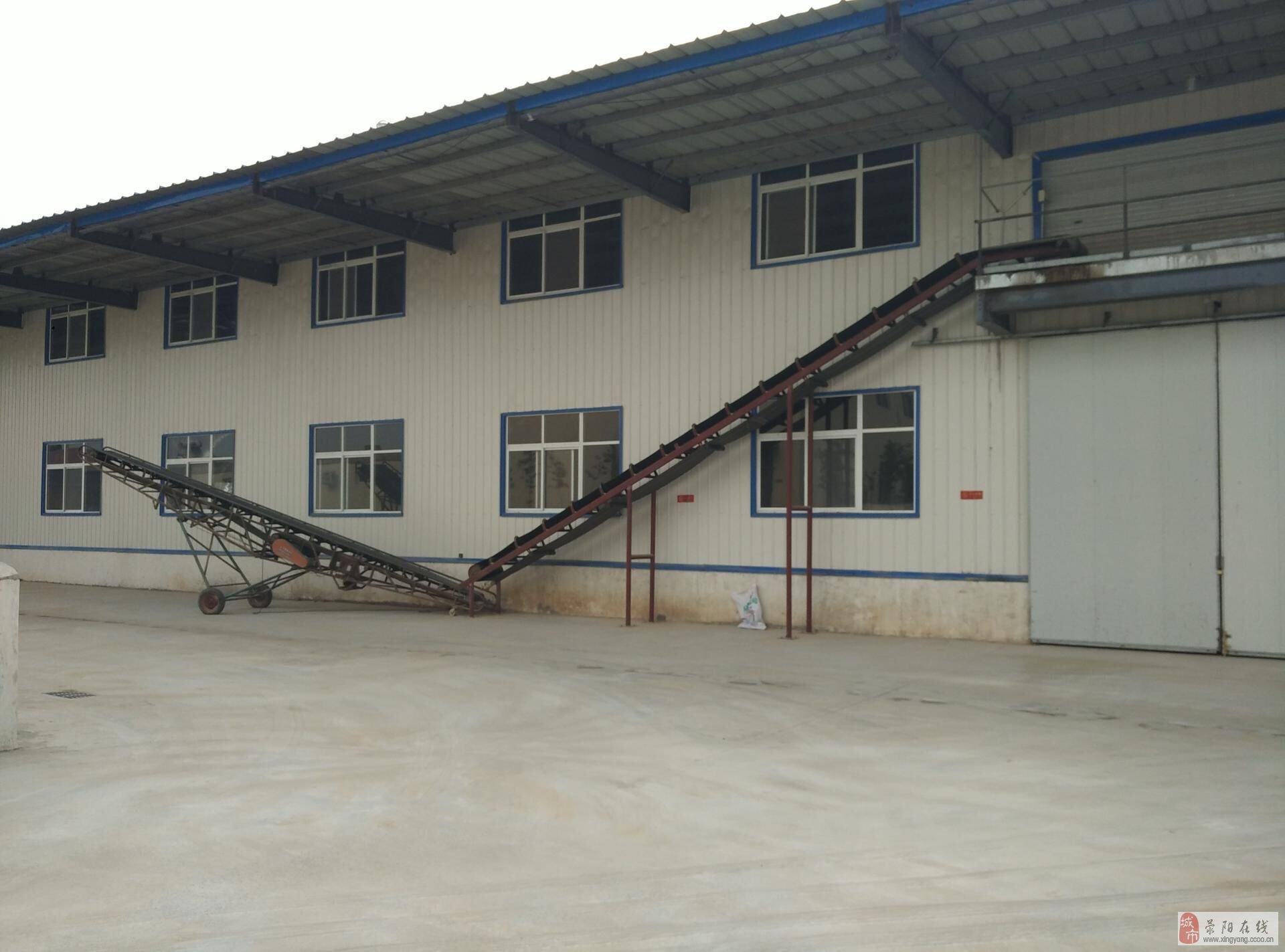 现有钢结构厂房(仓库)2800平米