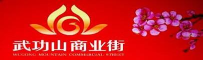 武功山商业街