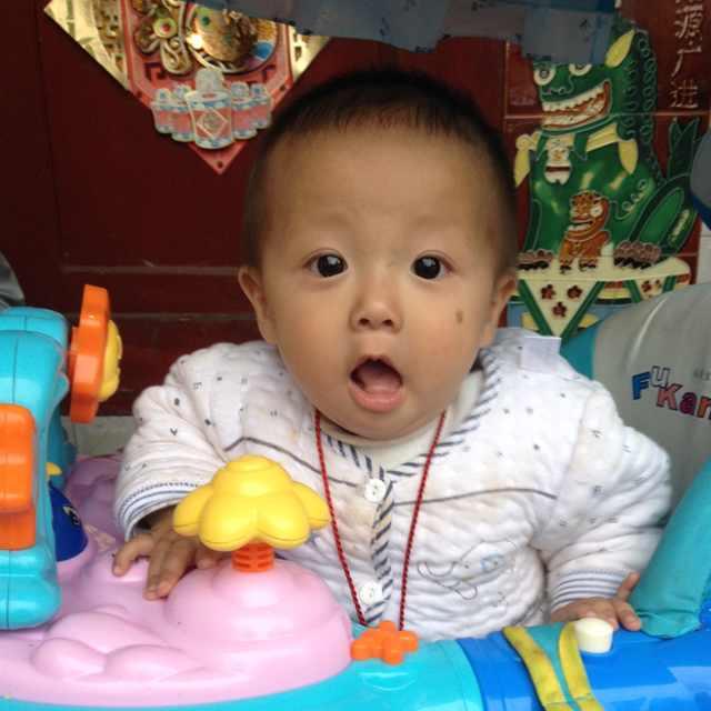 li  wei  qing