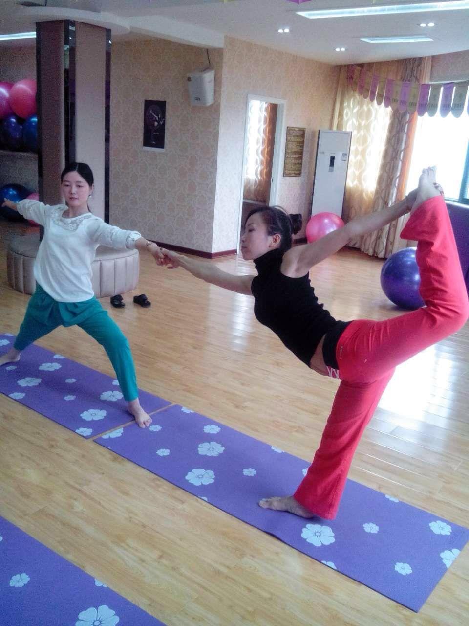哈他瑜伽,排毒瑜伽,纤体瑜伽,舞韵瑜伽,阴瑜伽,瘦身瑜伽,脊柱理疗瑜伽图片